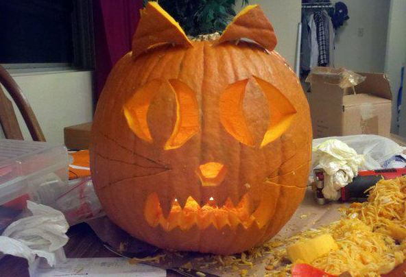 pumpkin kitty cat carving for halloween