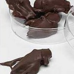chocolate-covered-crickets1